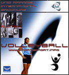click to View Volleyball Header